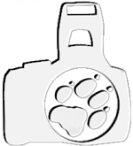 logo_cerne_bile_perex